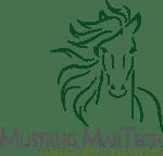 MustangMartech